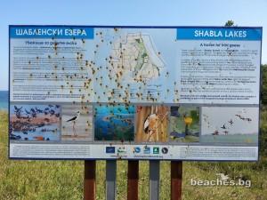 shabla-beach-2