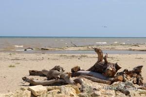 kamchia-beach-central-33