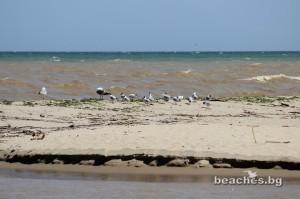 kamchia-beach-central-35