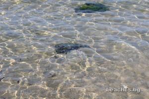 2-veselie-beach-17