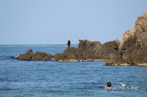 2-veselie-beach-21