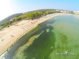 1-alepu-beach-7